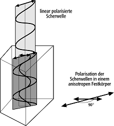 ausbreitungsgeschwindigkeit von schallwellen