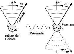http://www.geodz.com/deu/d/images/2075_elektronenspin-resonanz-datierung.png